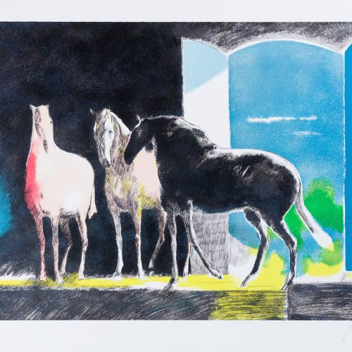 Ombre et Lumière (Skugga och ljus) - Färglitografi, signerad av Paul Guiramand.